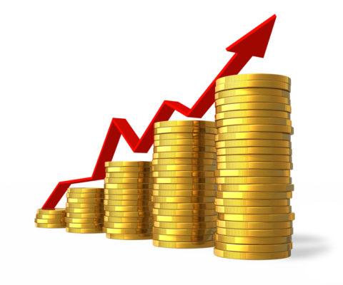 Чем чистая и валовая прибыль отличается от выручки в бизнесе?