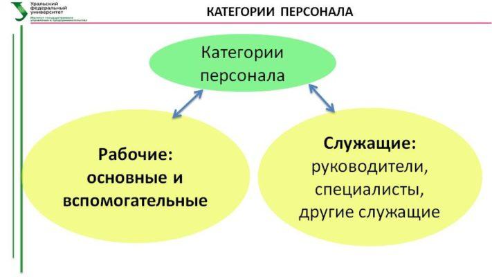 Ведущий и главный специалист: что такое, определение, в чем разница и кто выше