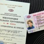 Чем отличаются международные водительские права от обычных и национальных