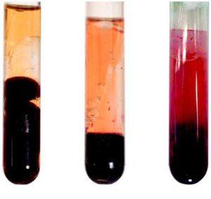 Чем сыворотка крови отличается от плазмы